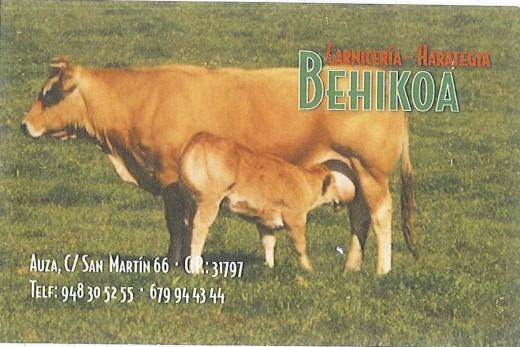 behikoa logo.jpg
